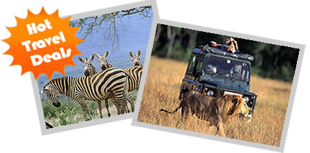kenya Hot Deals and Safaris